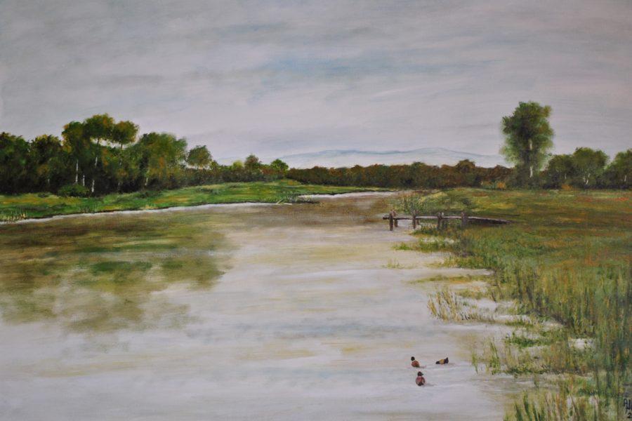 Il fiume- olio su tela- cm 70x50