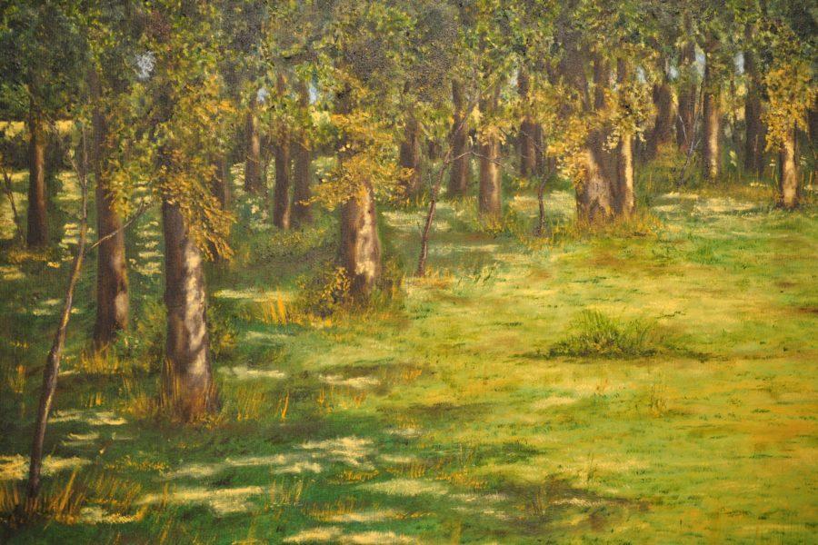 Radura nel bosco- olio su tela- cm 70x50