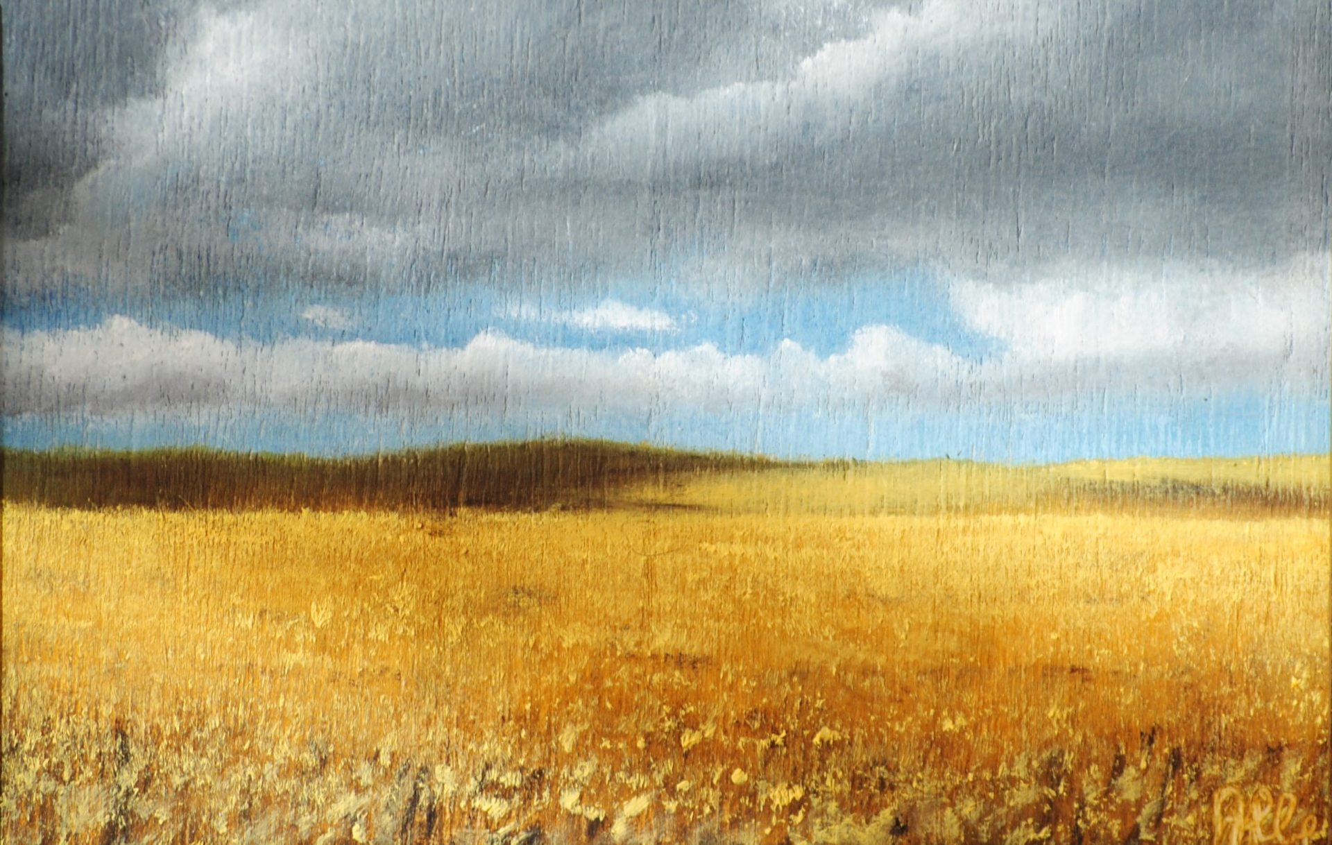"""Nuvole su grano"" olio su tavola"