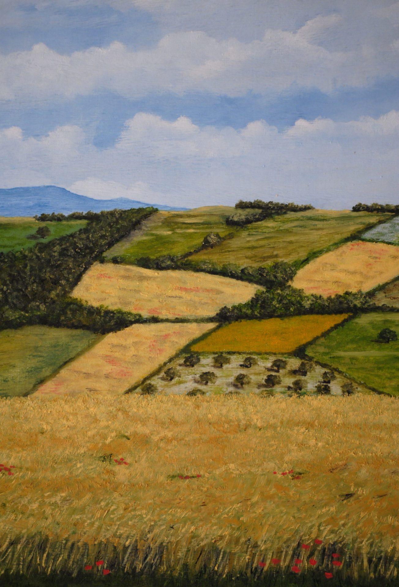"""""""Colline a Manciano"""" olio su tela cm 30×40"""