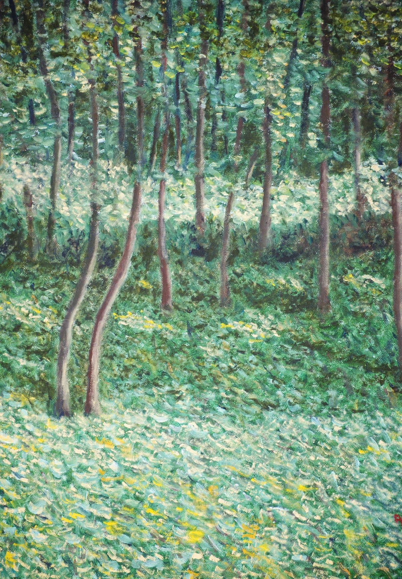 """""""Impressioni nel bosco"""" olio su tela cm 30×40"""