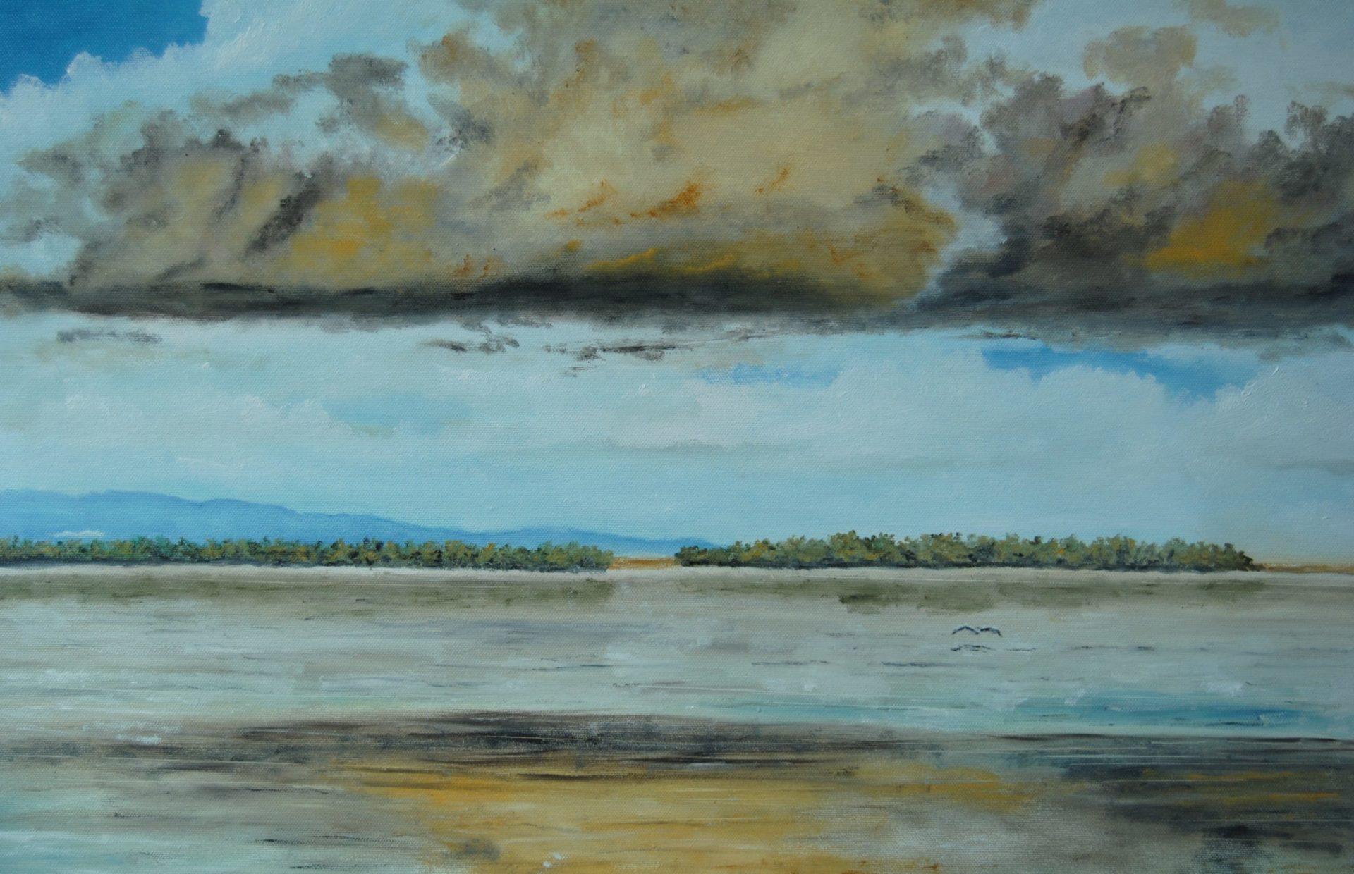 """""""La nuvola"""" olio su tela cm 70×50"""