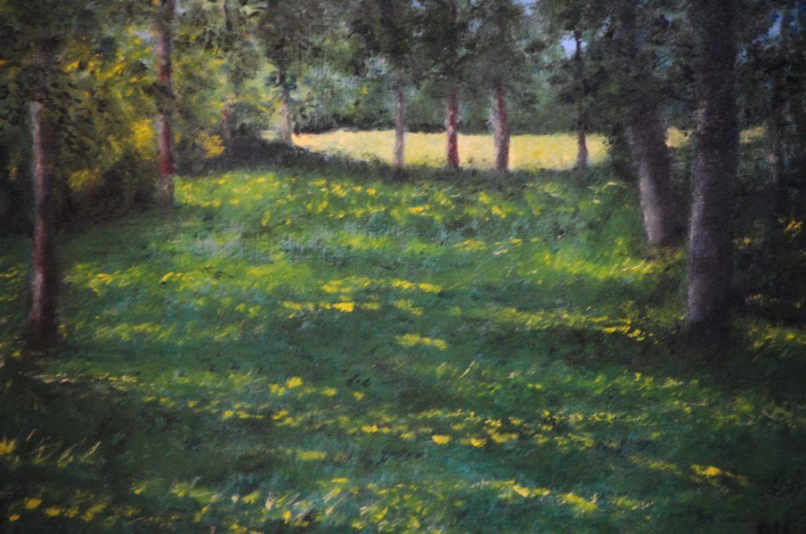 """""""Luce nel verde"""" olio su tela cm 40×30"""