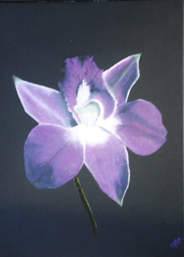 """""""L'orchidea"""" olio su tela cm 30×40"""