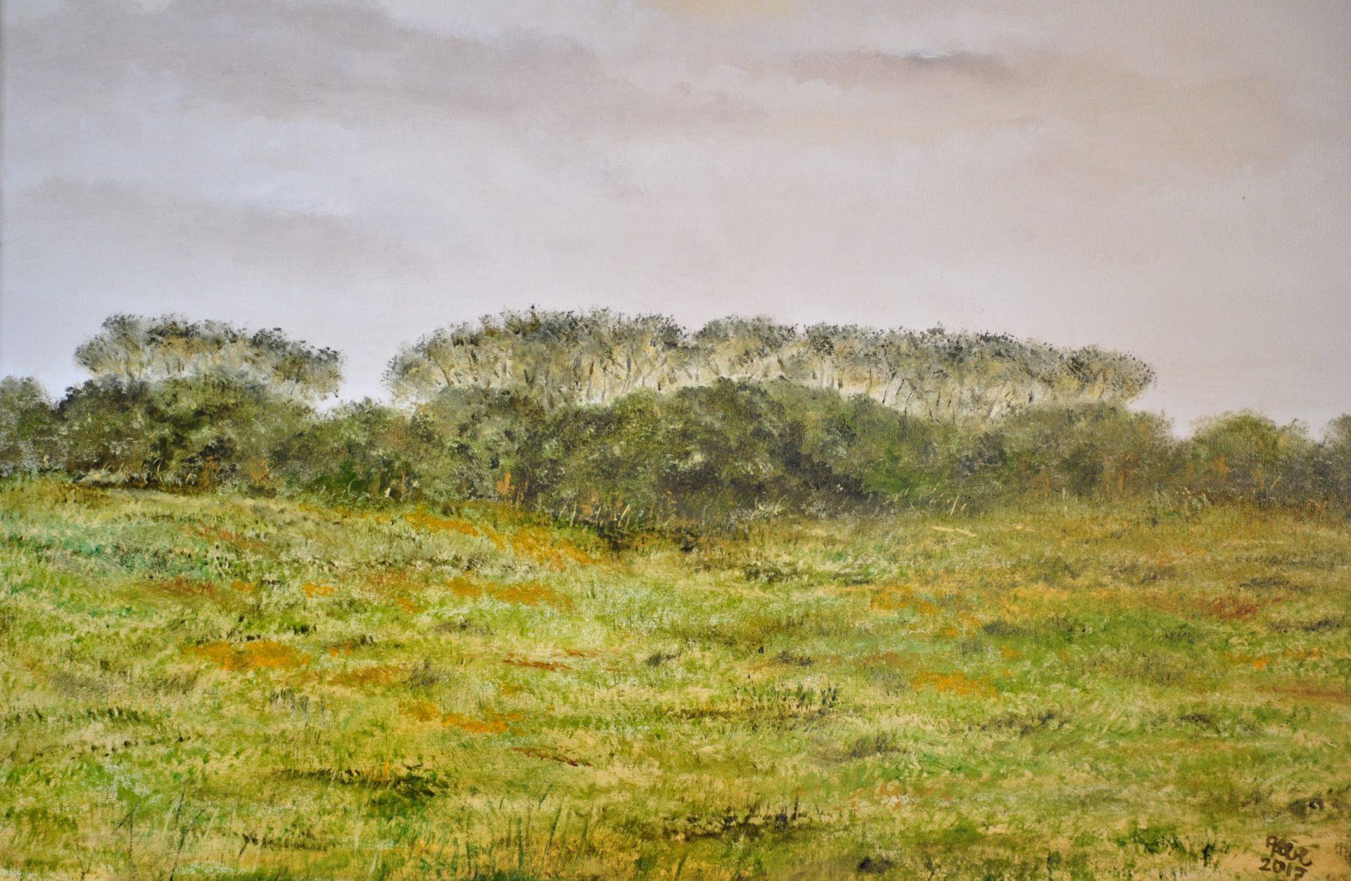 """""""Paesaggio con boschetto"""" olio su tela cm 50×40"""