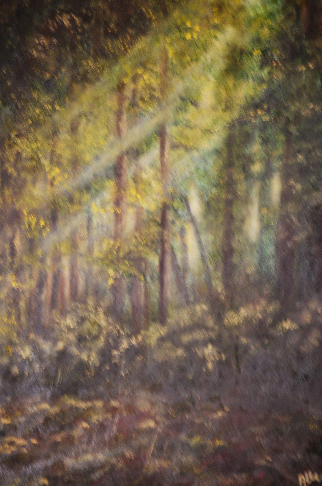 """""""Raggi di sole"""" olio su tela cm 35×50"""