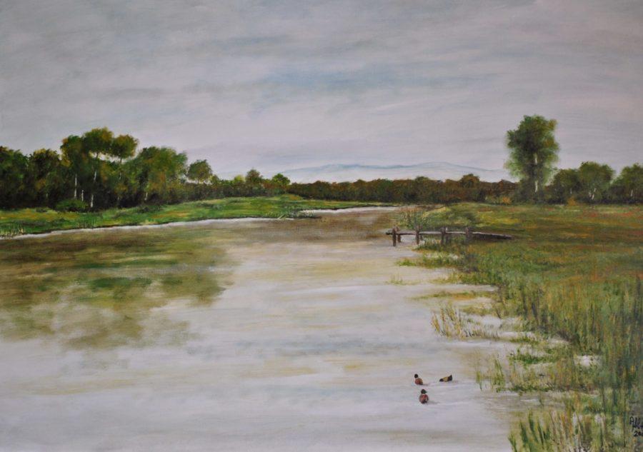 """""""Sul fiume"""" olio su tela cm 70×50"""