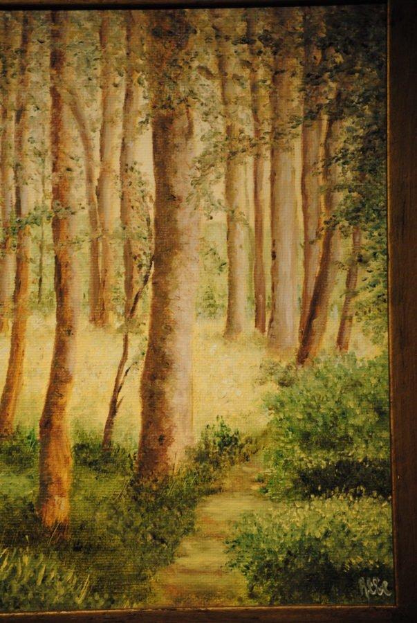 """""""Luce nel bosco"""" olio su tela cm 30×40"""