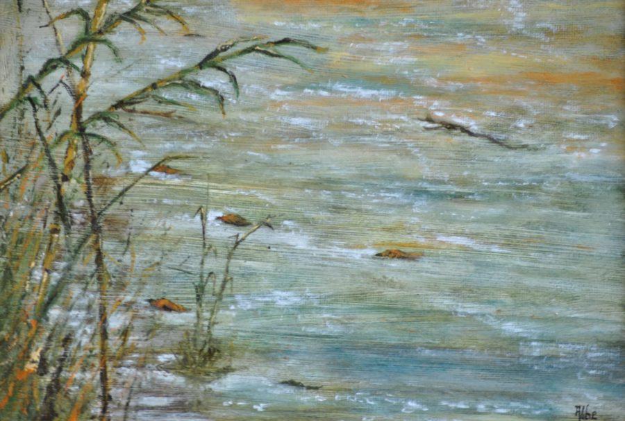 """Canne sul fiume"" olio su tavola cm 30×21"