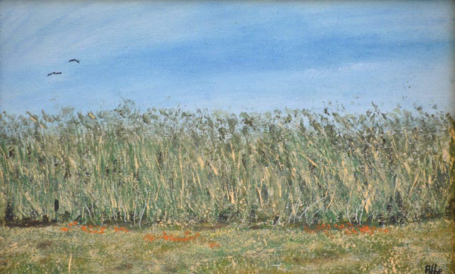 """""""Grano di maggio"""" olio su tavola cm 28×17"""