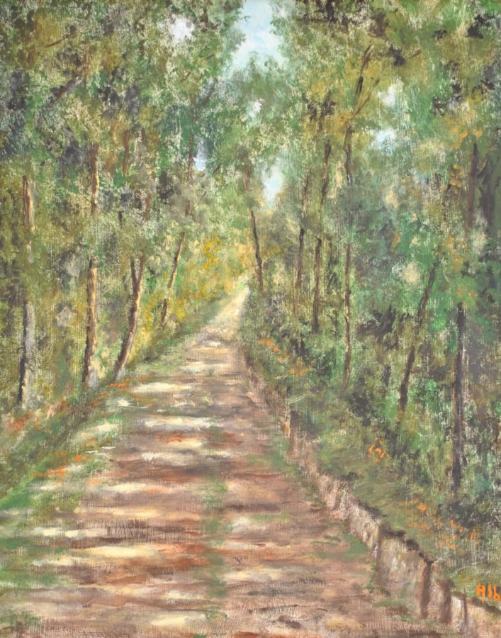 """Strada nel bosco"" olio su tela cm 30×40"