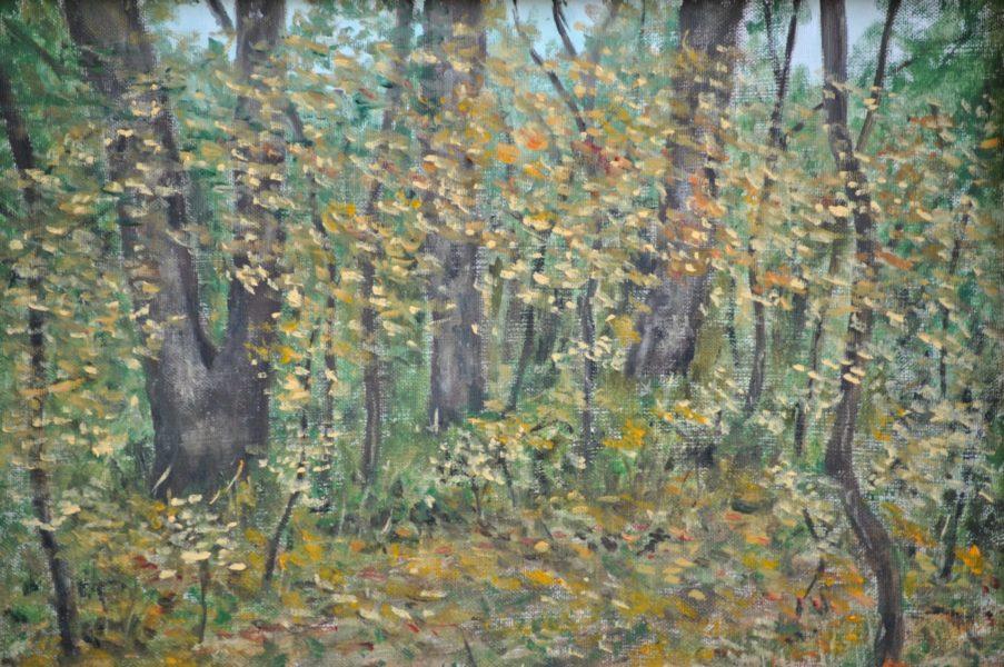 """""""Nel bosco"""" olio su tela cm 40×30"""
