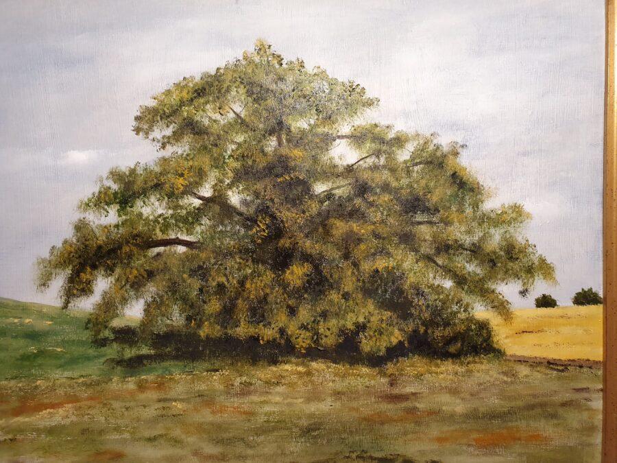 """""""Quercus""""- olio su tavola cm 54×45"""