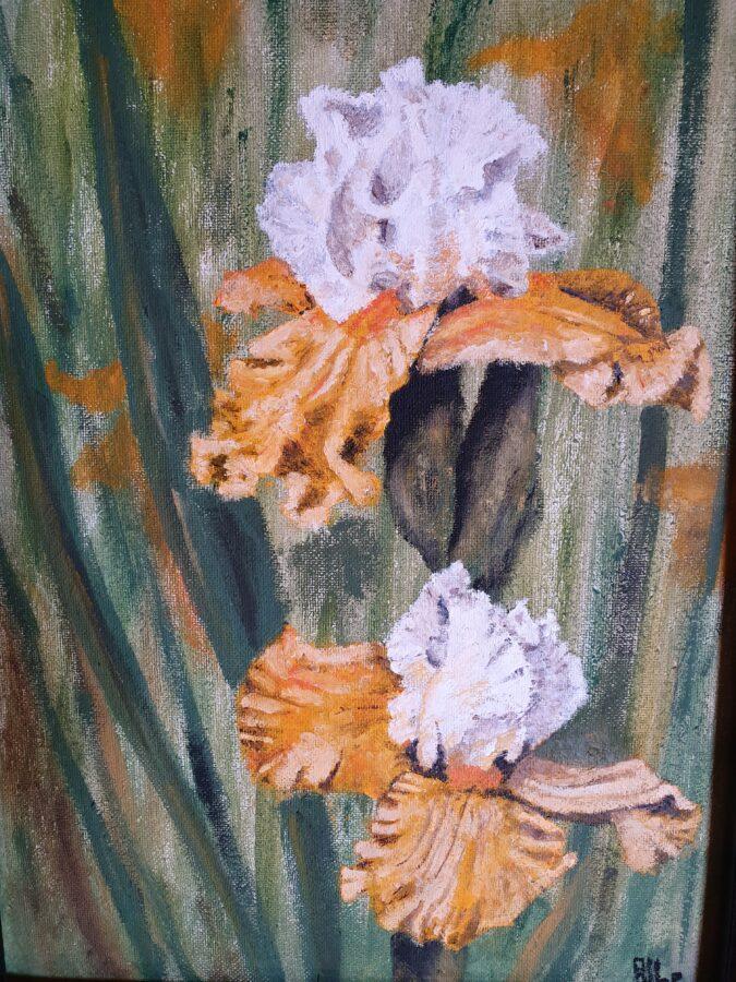 """"""" Iris gialli"""" – olio su cartone telato cm 34×46"""