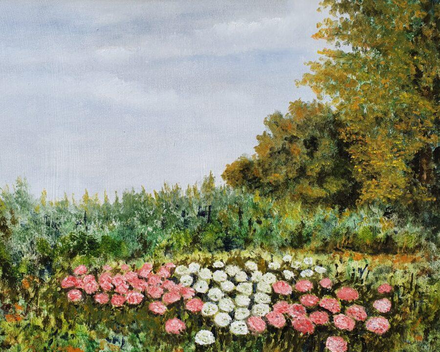"""""""Le ortensie"""" olio su tavola cm 44×37"""