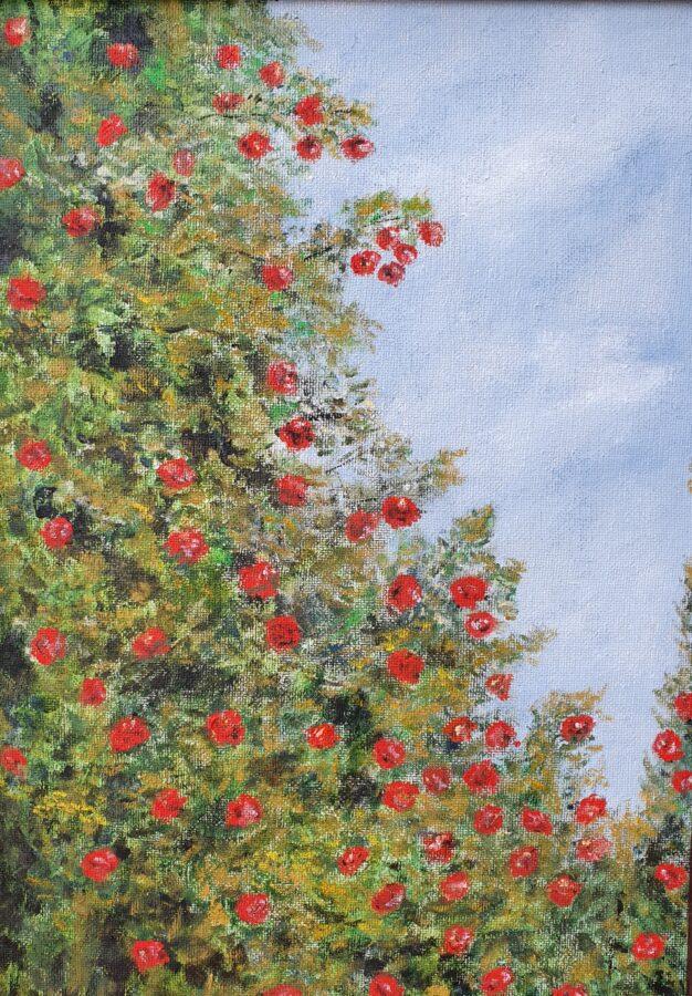 """""""rose rosse""""- olio su cartone telato cm 32×50"""